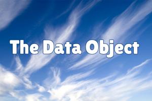 The Skooppa Data Object
