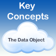 The Skooppa Data Object